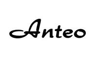 anteo-pizzini
